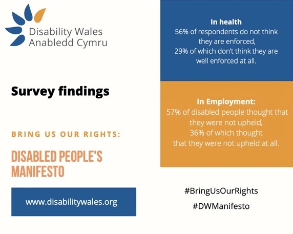 Stats on rights in health and employment, taken from the DW manifesto. 56% of respondents do not feel like their rights are enforced in health. 57% of disabled people do not think that their rights are upheld in employment.