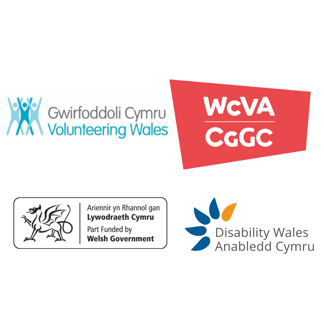 Logos of the organisations involved in the EQuip project. They are, volunteering Wales, WCVA, Welsh Government and Disability Wales
